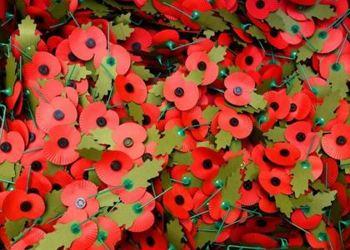 Poppy Appeal - £200.45